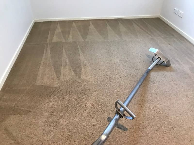 Professional Carpet Steam Cleaning Melbourne